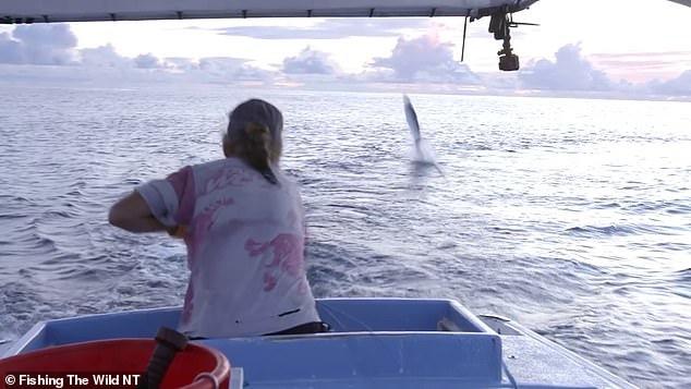 Cá mập nhảy ra khỏi mặt nước, 'cuỗm' cá thu từ tay người đi câu