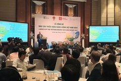 Vietnam energy prospects 2019 announced