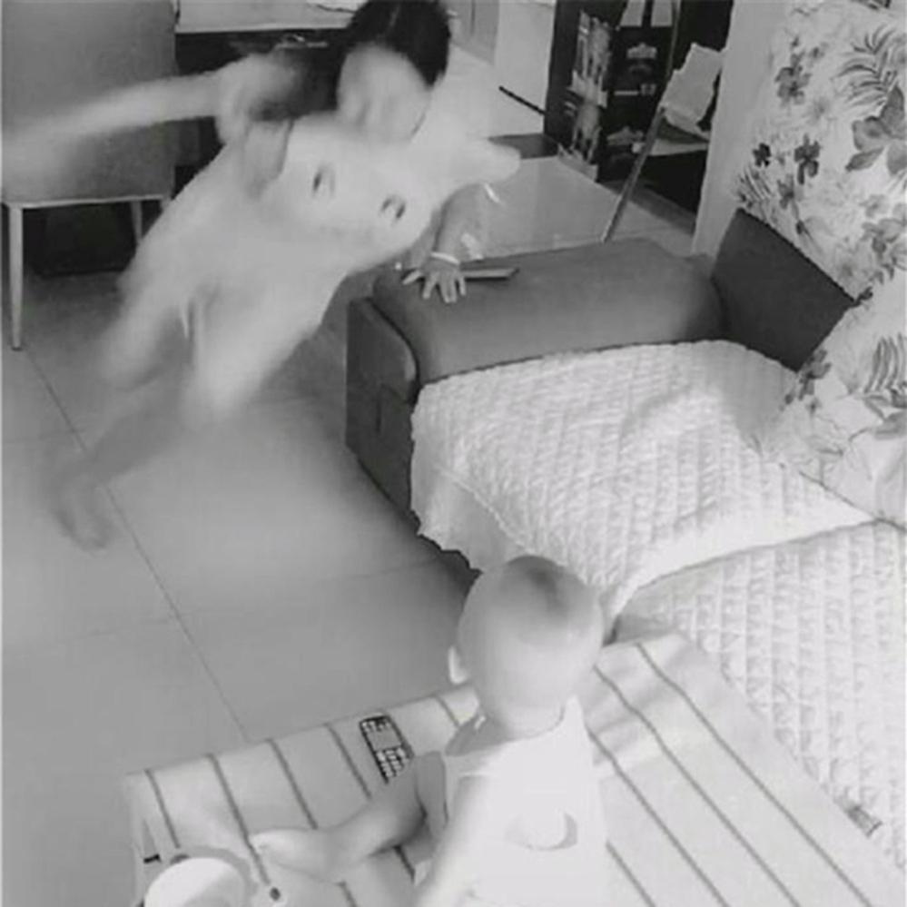 Bị vợ lạnh nhạt, chồng đặt camera theo dõi và bật khóc khi xem hình