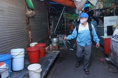 Hanoi strives to get dengue fever under control in November