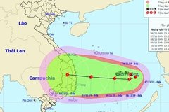 Storm Nakri likely to hit Vietnam's central region