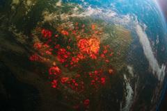 Hơn 11.000 nhà khoa học cùng báo động về tình trạng khí hậu Trái đất