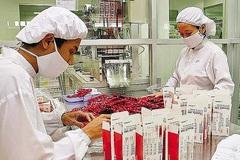 Strict regulations limit foreign drug traders in Vietnam's market