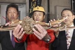 Con cua tuyết giá kỷ lục hơn 1 tỷ tại phiên đấu giá ở Nhật