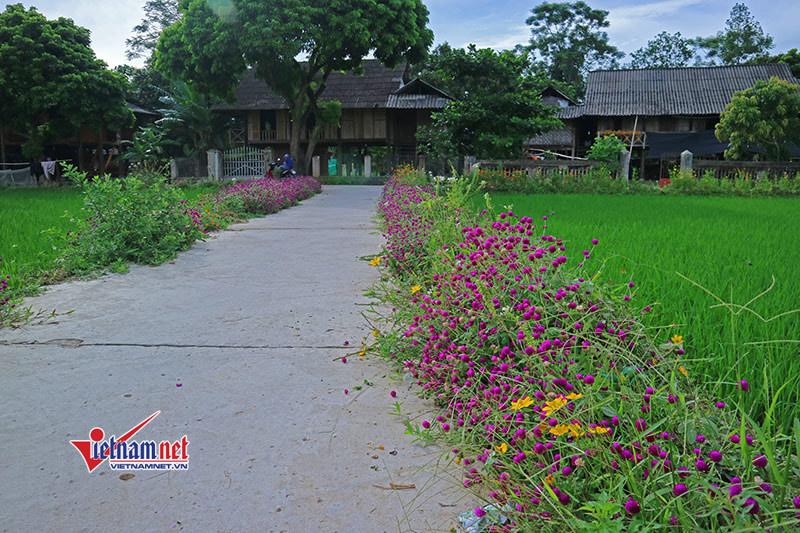 Cần nhân rộng mô hình đường hoa, vườn mẫu Nông thôn mới