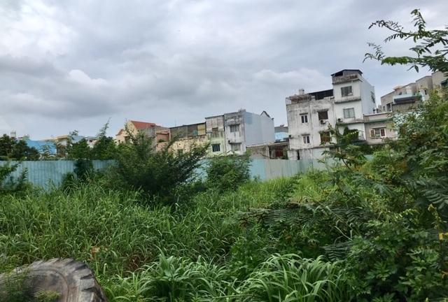 Dự án Đức Long Western Park: Cấp phép 15 tầng, môi giới rao bán đến tầng 21