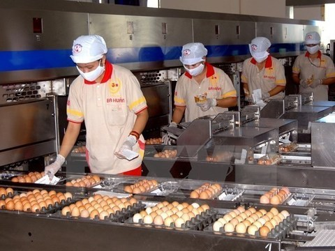 livestock,pork export,Vietnam,vietnam economy