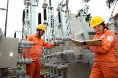Electricity of Vietnam group told to stick to tiered pricing model