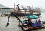 Bão số 6 đêm nay đổ bộ Bình Định, Phú Yên, Khánh Hoà, gió mạnh cực đại