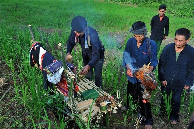 Festival to pray for bumper crop of Kho Mu ethnic people