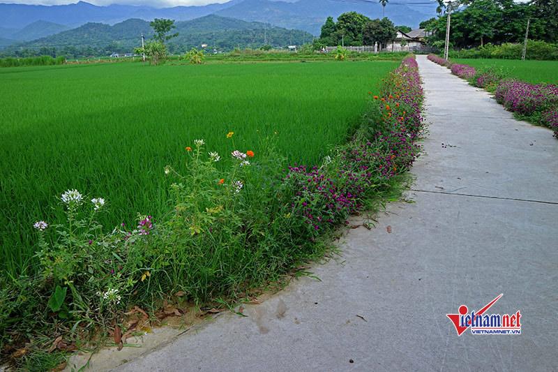 Xây dựng nông thôn mới: Bài học từ bộ tiêu chí của huyện Nam Đàn
