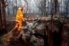 Cháy rừng kinh hoàng ở Australia, khói nhìn thấy từ New Zealand