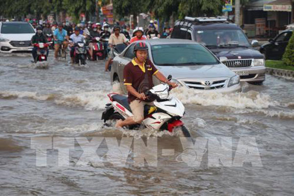 HCM City's flood prevention projects need to be reworked: experts