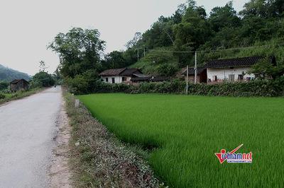 Quảng Ninh: Điểm sáng trong xây dựng Nông thôn mới, cần nhân rộng