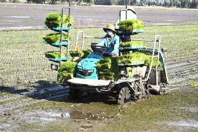 Đẩy mạnh hỗ trợ ứng dụng công nghệ cao trong nông nghiệp, nông thôn