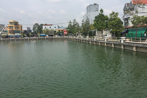 Thăm ao Trường Đua ở Tiền Giang