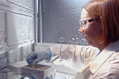 Abbott discovers new strain of HIV virus