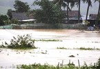 Typhoon Nakri leaves two people dead with another missing in central Vietnam