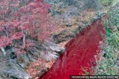 Dòng sông gần biên giới liên Triều đỏ quạch máu