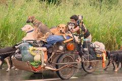 Người đàn ông đẩy xe khắp đất nước để cứu chó hoang