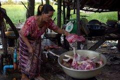 Nỗi ám ảnh nghề buôn thịt chó ở Campuchia