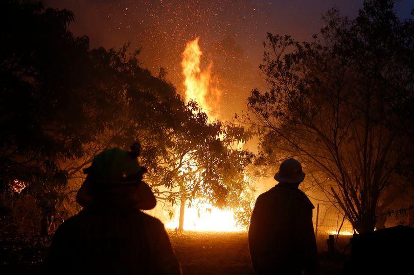 Australia,cháy rừng,thảm họa,thiên tai,lính cứu hỏa,cộng đồng mạng