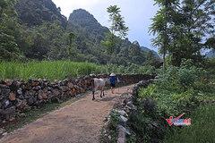 Đắk Lắk quan tâm hỗ trợ buôn làng khó khăn xây dựng NTM