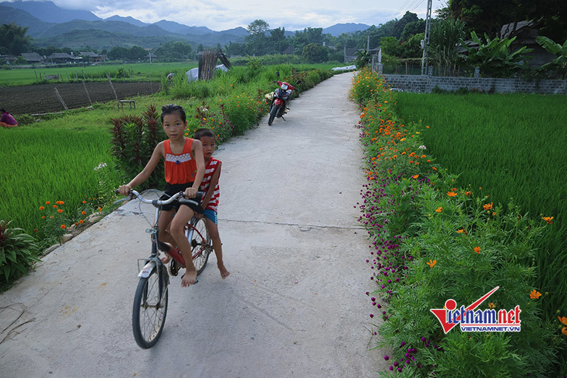 Những điểm sáng trong xây dựng Nông thôn mới Đắk Lắk