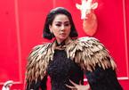 Chung kết Người đẹp Xứ Dừa: Quy tụ nhiều người nổi tiếng