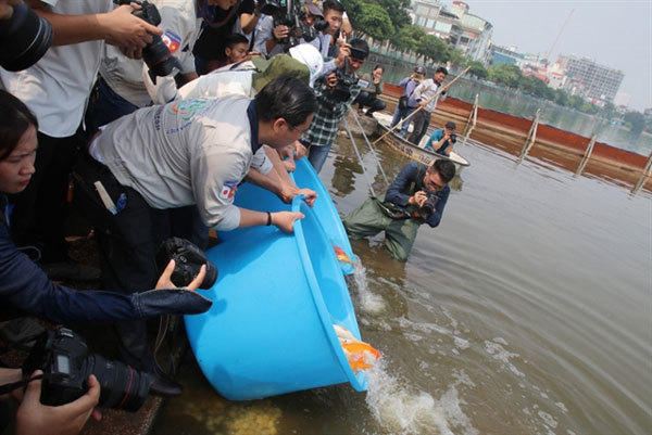 Hanoi: Pool be treated with Japanese nano-bioreactor technology