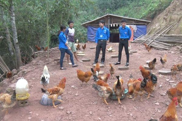 Chung tay xây dựng nông thôn mới - Cơ hội phát huy sức trẻ