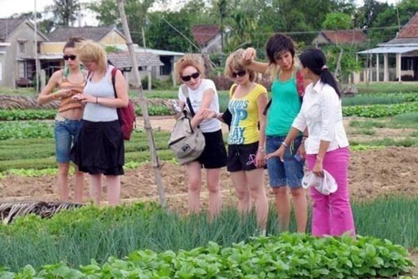 Xây dựng NTM, phát huy lợi thế du lịch nông nghiệp nông thôn