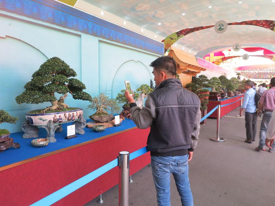 Anh nông dân Cần Thơ tạo tiểu cảnh bonsai giá 300 triệu đồng