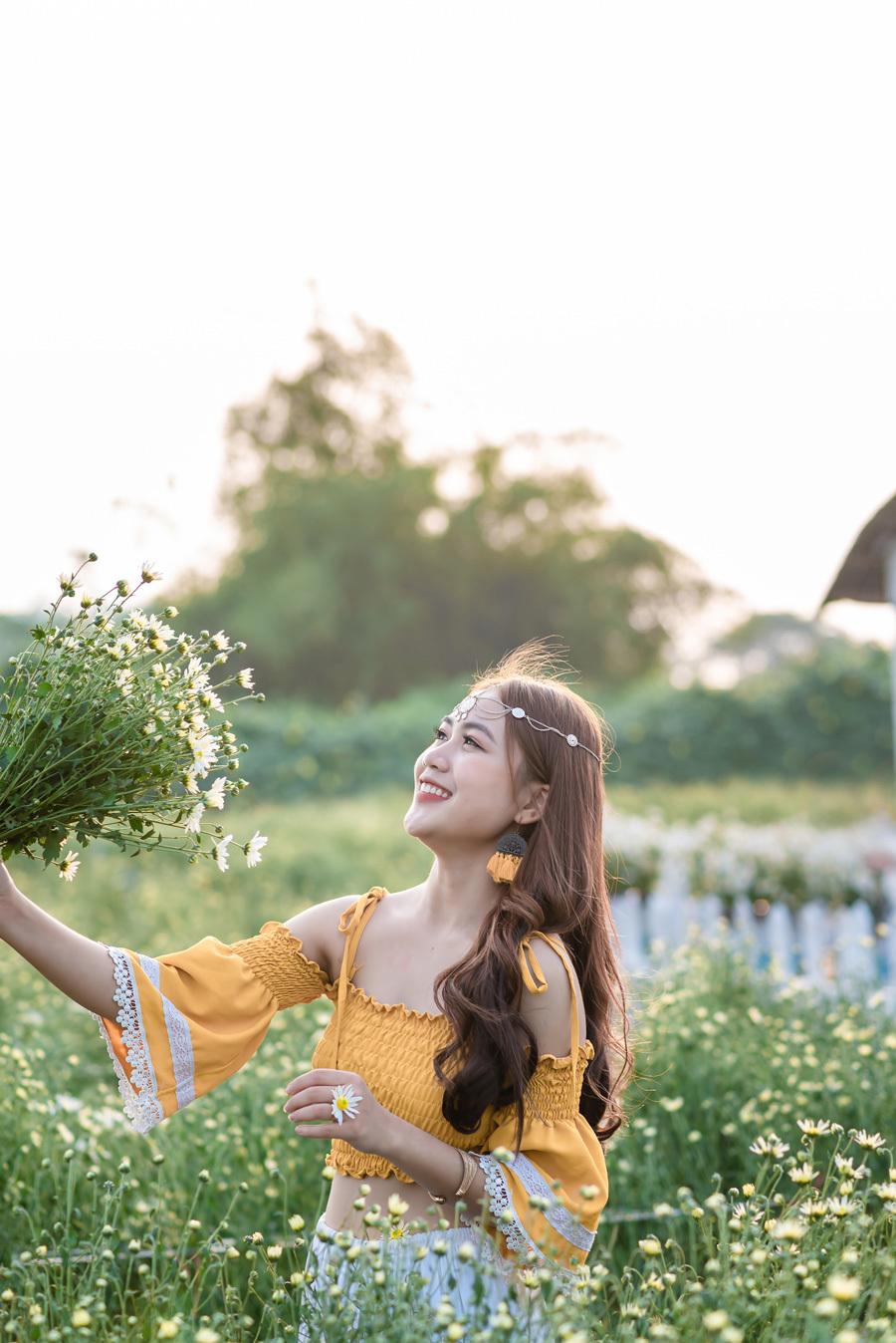 cúc hoạ mi,Thảo nguyên hoa Long Biên