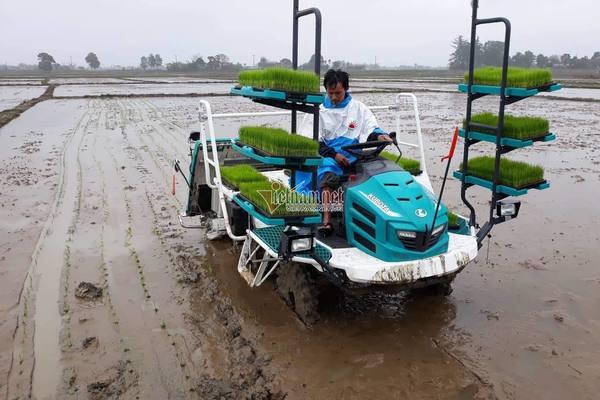 Hội nông dân Đà Nẵng hăng hái tham gia xây dựng NTM