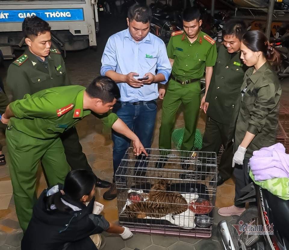 Bỏ lại cặp hổ còn sống, 2 đối tượng ở Hà Tĩnh chạy trốn