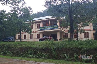 Để rừng bị xâm hại, Hạt trưởng kiểm lâm ở Quảng Trị bị cảnh cáo