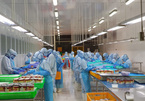 Vietnamese food companies shift focus to home market