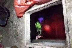 Con rể nghi sát hại mẹ vợ rồi giấu xác xuống bể nước ở Thái Bình