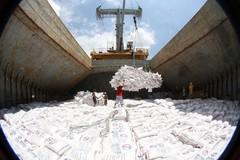 Philippines, Ivory Coast emerge as Vietnam's largest rice export markets