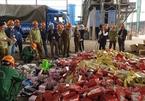 Hanoi destroys 63 tonnes of illegal goods