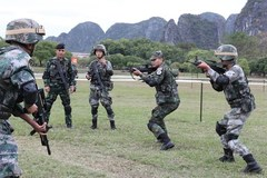 ADMM Plus countries conclude joint anti-terrorism actual-troop drill