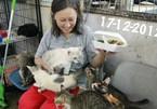 Người phụ nữ Singapore dành cả đời cứu hộ động vật mất vì ung thư