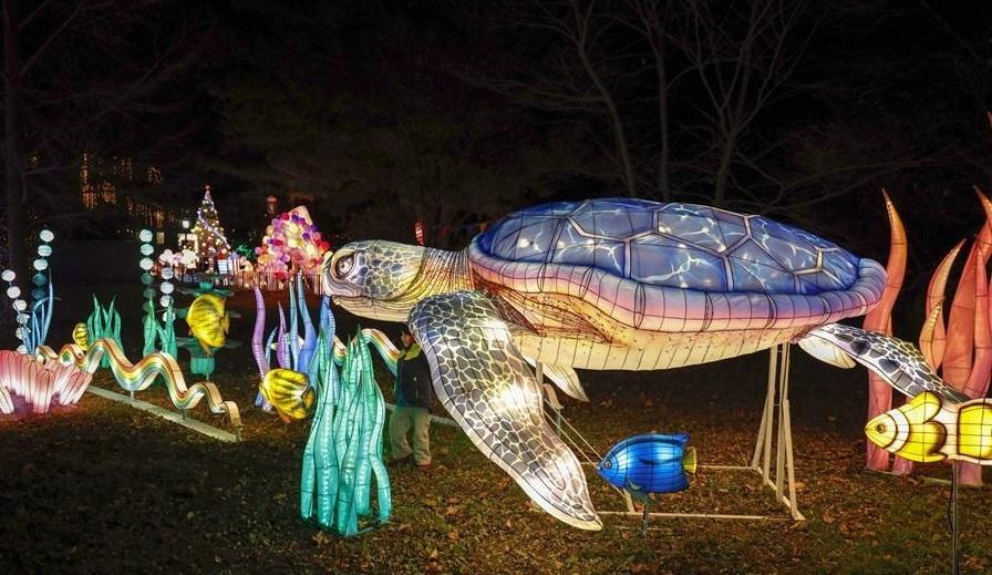 Ngắm lễ hội đèn lồng lung linh sắc màu trên đất Mỹ