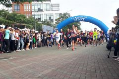 280 người tham dự giải chạy Ekiden 2019