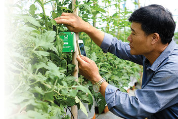 Time is ripe for Vietnam's agriculture digitalization