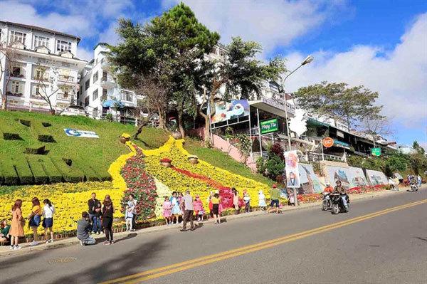 Da Lat prepares for flower festival