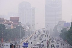 Hanoi determined in dealing with environmental pollutions