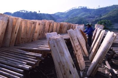 Yên Bài đào tạo hơn 44.500 lao động nông thôn có việc làm sau học nghề