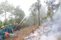Forest fire surveillance cameras installed in Thanh Hoa
